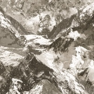 Anka 1622-3 Duvar Kağıdı