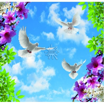 Gökyüzü Posterleri Gökyüzü-002