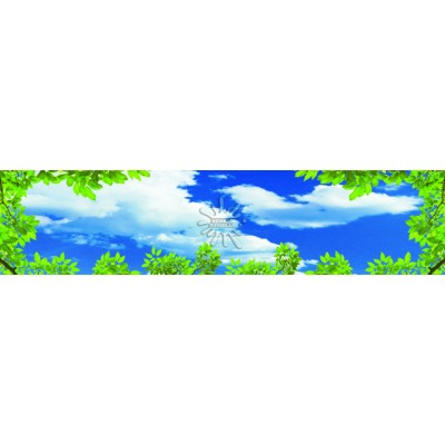 Gökyüzü Posterleri Gökyüzü-003