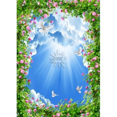 Gökyüzü Posterleri Gökyüzü-004