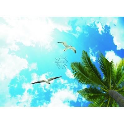 Gökyüzü Posterleri Gökyüzü-008